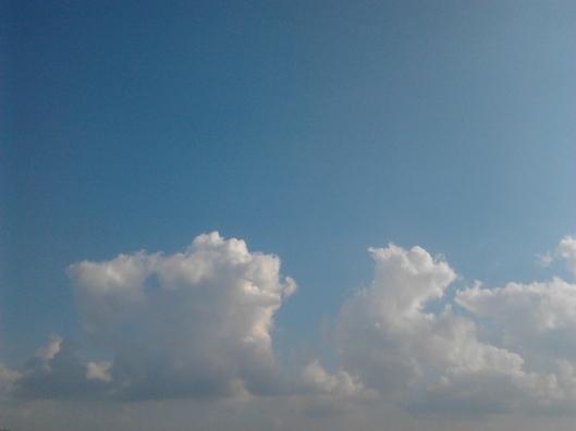 2012-09-07 09.03.23
